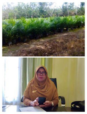 Disbunakkeswan Kampar Terus Berikan Pembinaan Kepada Petani Kelompok